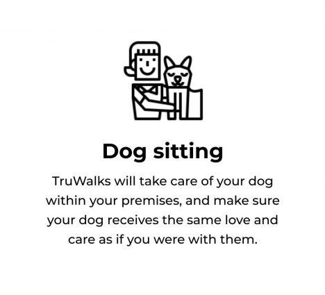 tru walks - dog sitting