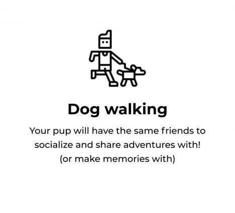tru walks - dog walking